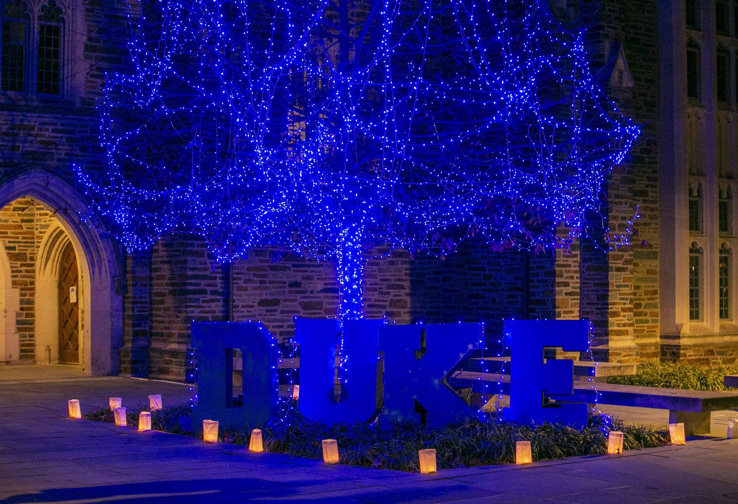 The University Communications team wrapped cardboard letters in blue string lights and placed them at the bottom of a decorated tree for a holiday video.